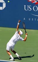 Tennis Serve Technique (235 Posted) Ljubicic Serve