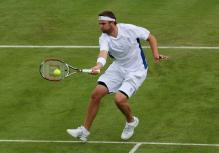 Mardy Fish hits a forehand volley.jpg