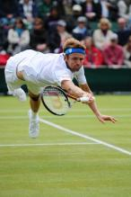 Mardy Fish Pictures and Photos
